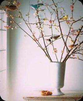 albero-di-pasqua2_rounded-borders