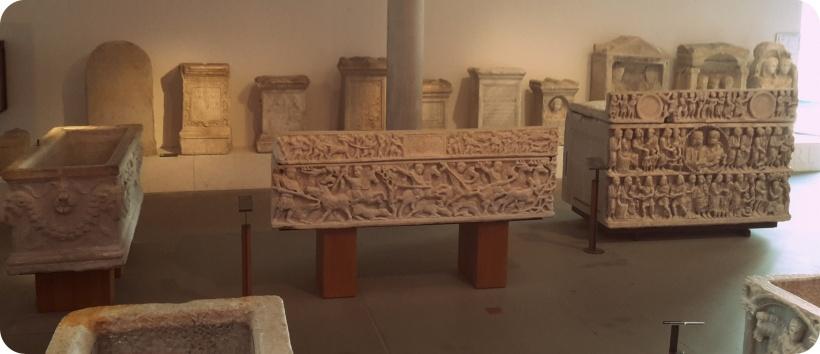 sarcof.arles